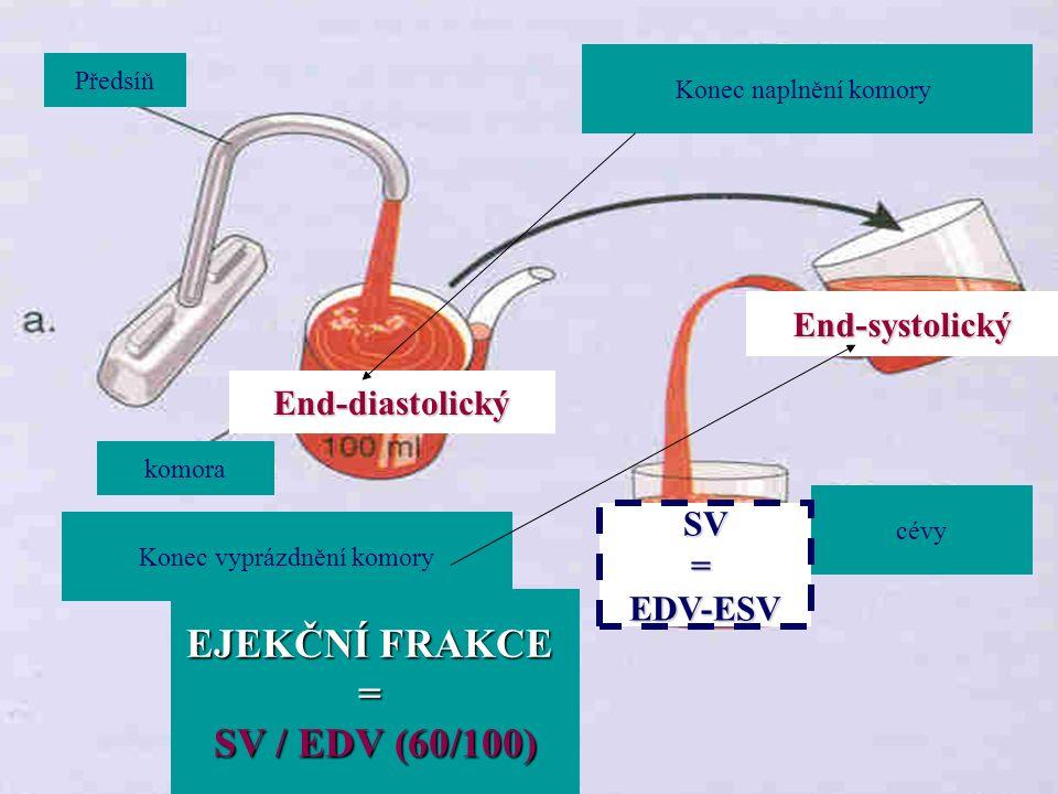 Předsíň komora Konec naplnění komory cévy Konec vyprázdnění komory EJEKČNÍ FRAKCE = SV / EDV (60/100) End-diastolický End-systolický SV=EDV-ESV