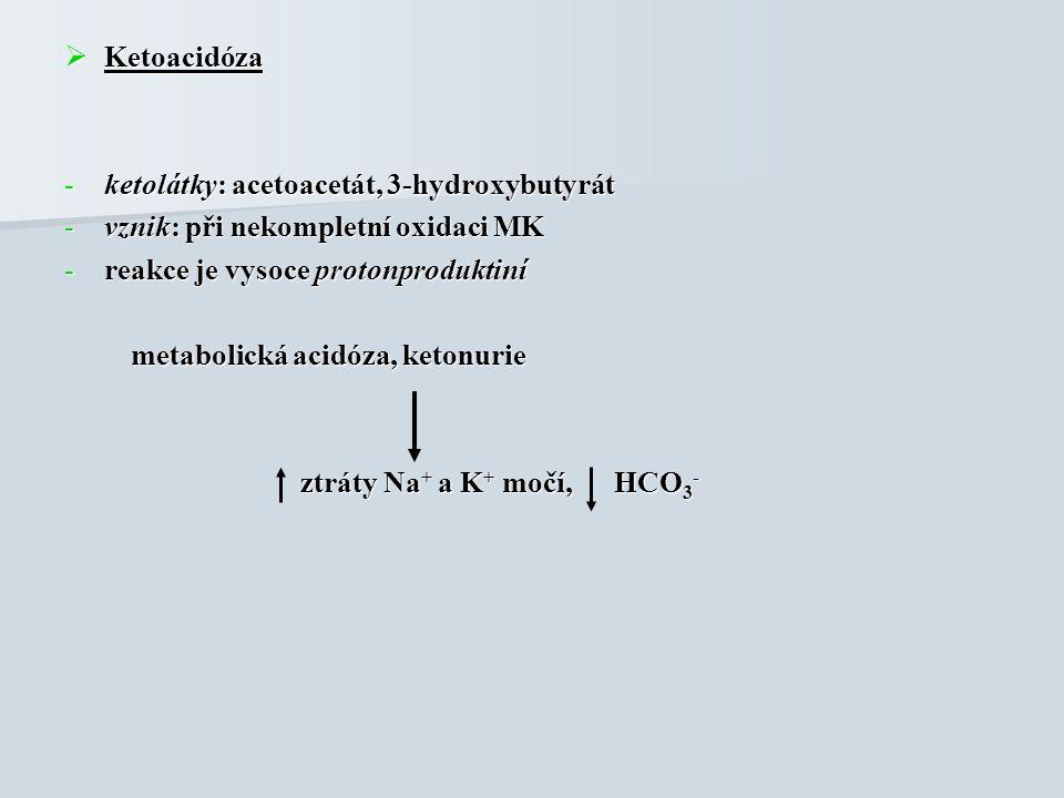  Ketoacidóza -ketolátky: acetoacetát, 3-hydroxybutyrát -vznik: při nekompletní oxidaci MK -reakce je vysoce protonproduktiní metabolická acidóza, ketonurie metabolická acidóza, ketonurie ztráty Na + a K + močí, HCO 3 - ztráty Na + a K + močí, HCO 3 -