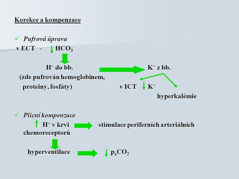 Korekce a kompenzace Pufrová úprava Pufrová úprava v ECT - HCO 3 - v ECT - HCO 3 - H + do bb. K + z bb. H + do bb. K + z bb. (zde pufrován hemoglobine