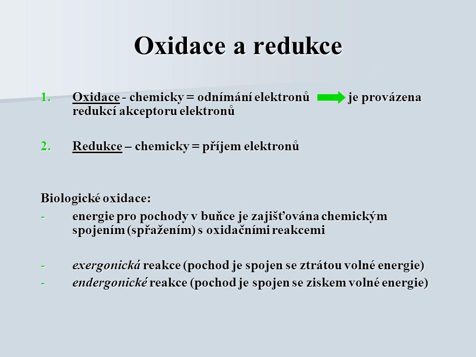 Oxidace a redukce 1.Oxidace - chemicky = odnímání elektronů je provázena redukcí akceptoru elektronů 2.Redukce – chemicky = příjem elektronů Biologické oxidace: -energie pro pochody v buňce je zajišťována chemickým spojením (spřažením) s oxidačními reakcemi -exergonická reakce (pochod je spojen se ztrátou volné energie) -endergonické reakce (pochod je spojen se ziskem volné energie)