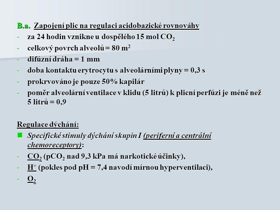 B.a. Zapojení plic na regulaci acidobazické rovnováhy -za 24 hodin vznikne u dospělého 15 mol CO 2 -celkový povrch alveolů = 80 m 2 -difúzní dráha = 1