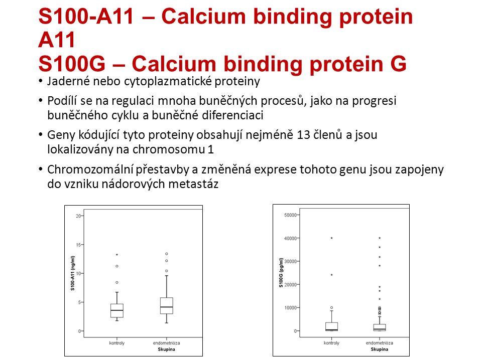 S100-A11 – Calcium binding protein A11 S100G – Calcium binding protein G Jaderné nebo cytoplazmatické proteiny Podílí se na regulaci mnoha buněčných procesů, jako na progresi buněčného cyklu a buněčné diferenciaci Geny kódující tyto proteiny obsahují nejméně 13 členů a jsou lokalizovány na chromosomu 1 Chromozomální přestavby a změněná exprese tohoto genu jsou zapojeny do vzniku nádorových metastáz