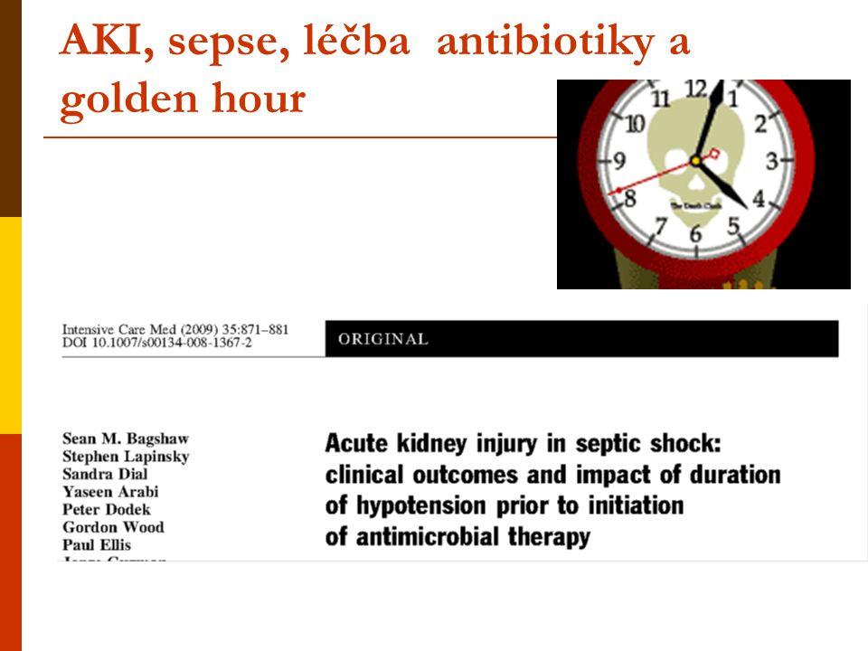 Náhrada funkce ledvin - RRT  Jakou intenzitou náhrady funkce ledvin léčit kriticky nemocné.