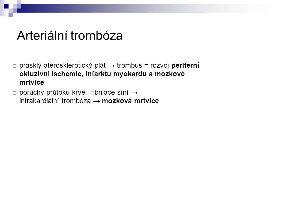 Sekundární hemostáza: hemokoagulační kaskáda Tenáza Protrombináza inhibitor tkáňového faktoru aktivovaný protein C zpevněná fibrinová síť společná cesta vnitřní cesta (kontaktní aktivace) vnější cesta (tkáňový faktor) (upraveno podle Wikipedia)