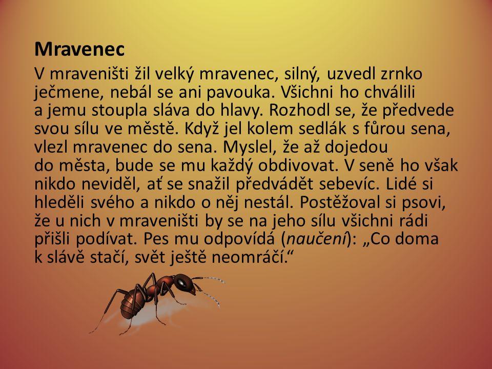 Mravenec V mraveništi žil velký mravenec, silný, uzvedl zrnko ječmene, nebál se ani pavouka.