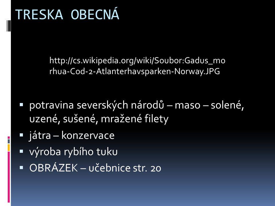 TRESKA OBECNÁ  potravina severských národů – maso – solené, uzené, sušené, mražené filety  játra – konzervace  výroba rybího tuku  OBRÁZEK – učebnice str.