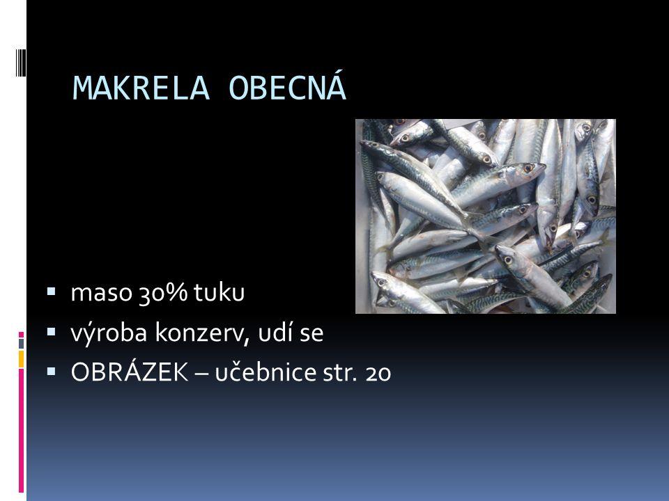 SARDINKA OBECNÁ  SARDINKA OBECNÁ – drobná ryba, v hejnech u břehů jižní Evropy, nakládá se do oleje – olejovky  OBRÁZEK – učebnice str.