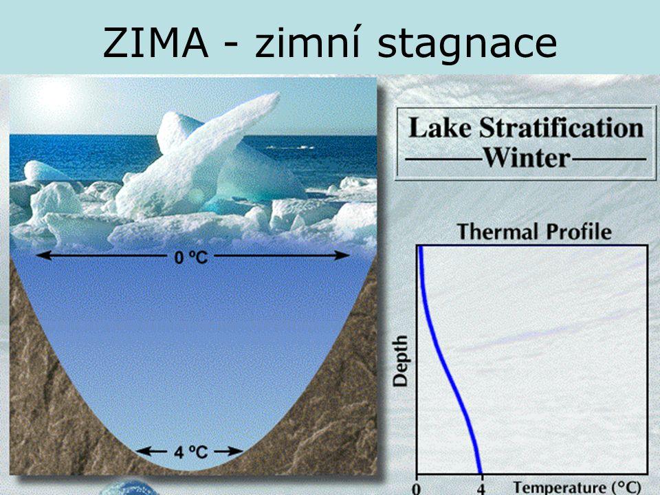 ZIMA - zimní stagnace