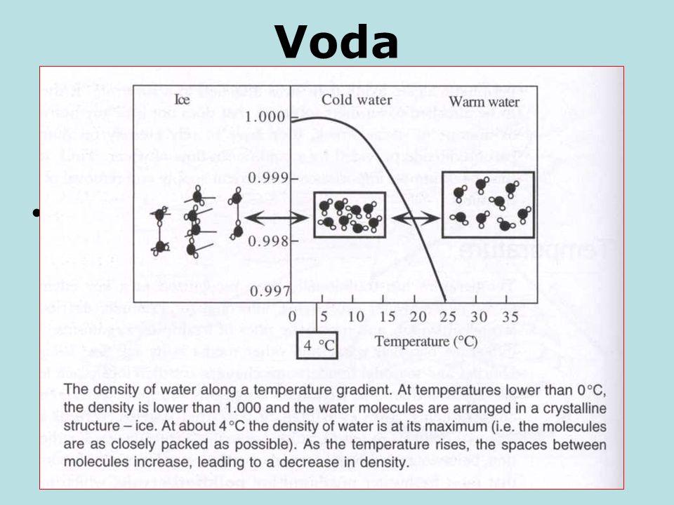 """Voda jako prostředí k životu Unikátní vlastnosti jsou dány asociací molekul prostřednictvím vodíkových můstků =tvorba """"clusterů"""", dynamických shluků."""