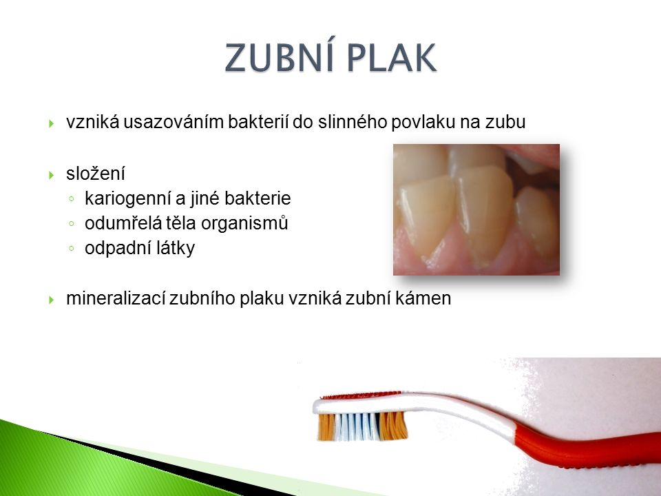  vzniká usazováním bakterií do slinného povlaku na zubu  složení ◦ kariogenní a jiné bakterie ◦ odumřelá těla organismů ◦ odpadní látky  mineralizací zubního plaku vzniká zubní kámen