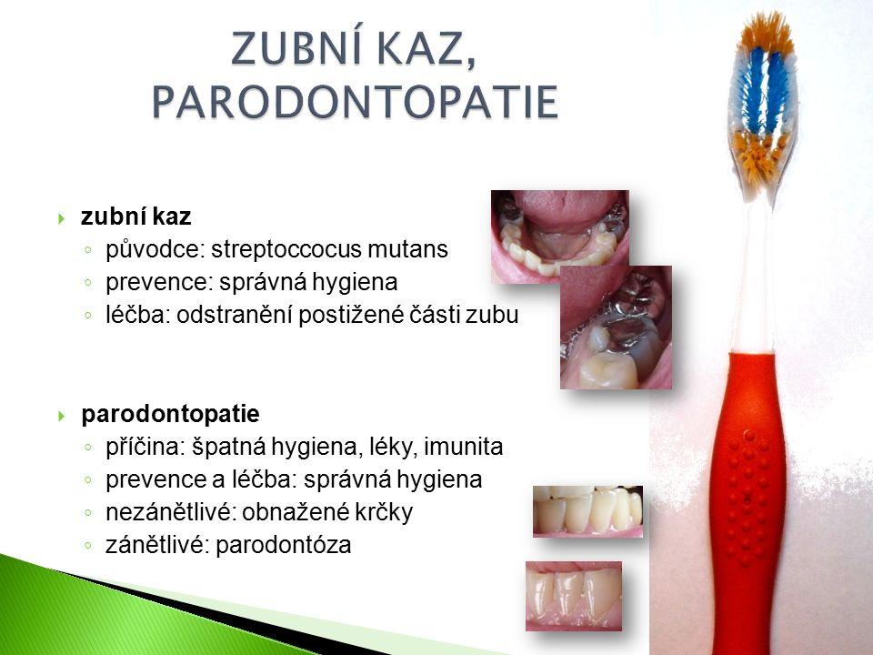  zubní kaz ◦ původce: streptoccocus mutans ◦ prevence: správná hygiena ◦ léčba: odstranění postižené části zubu  parodontopatie ◦ příčina: špatná hygiena, léky, imunita ◦ prevence a léčba: správná hygiena ◦ nezánětlivé: obnažené krčky ◦ zánětlivé: parodontóza
