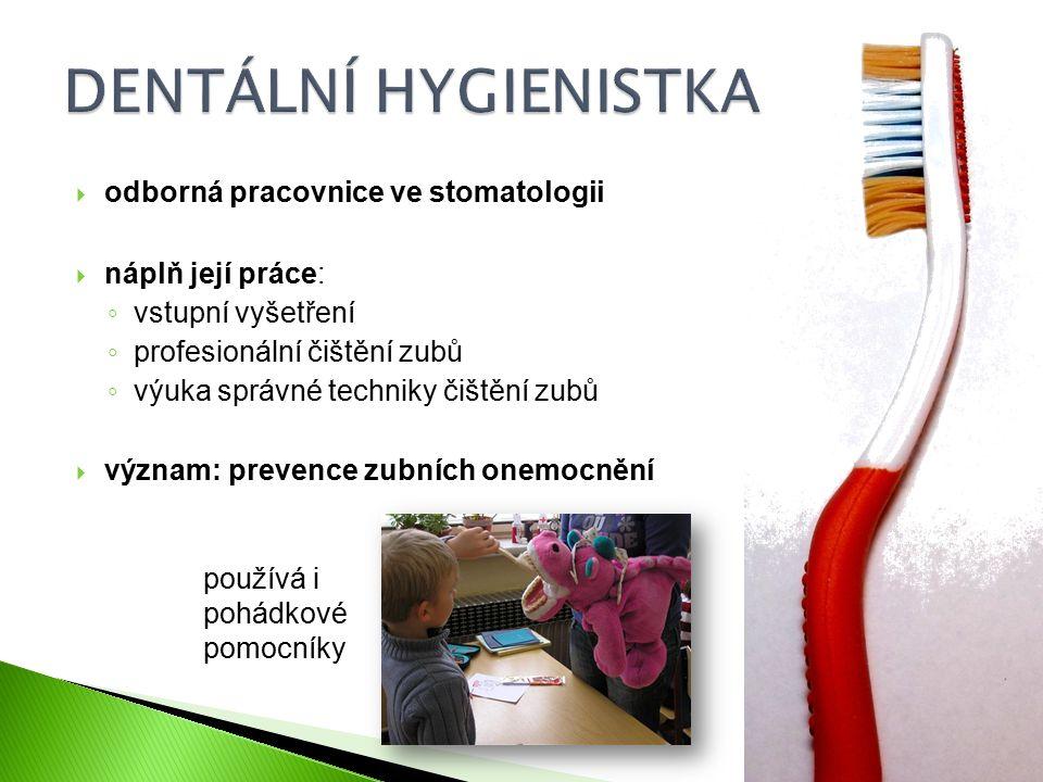  odborná pracovnice ve stomatologii  náplň její práce: ◦ vstupní vyšetření ◦ profesionální čištění zubů ◦ výuka správné techniky čištění zubů  význam: prevence zubních onemocnění používá i pohádkové pomocníky