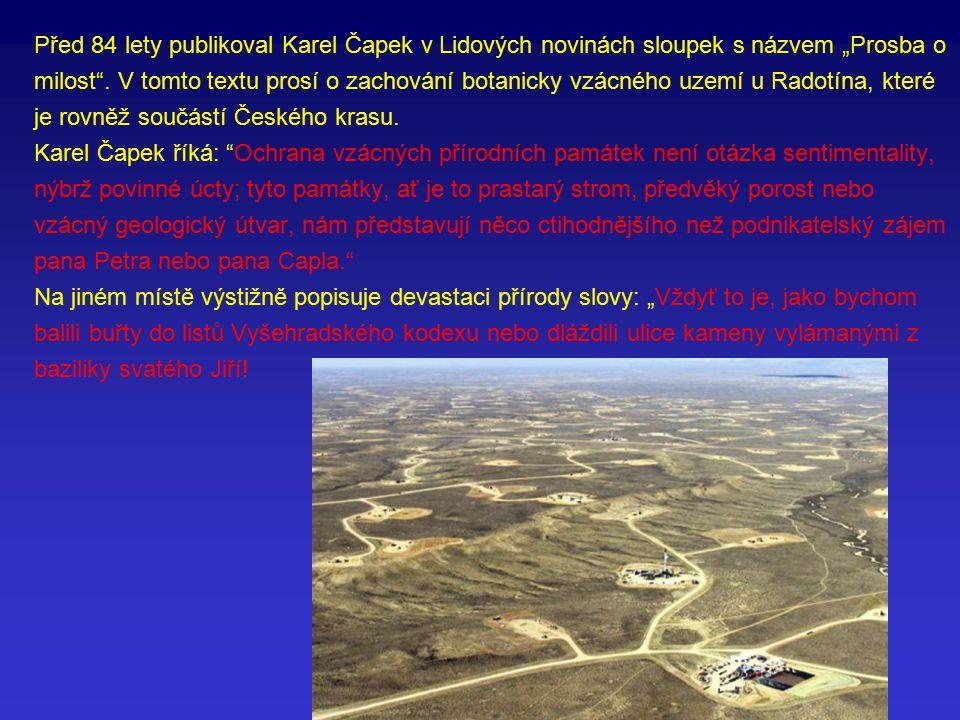"""Před 84 lety publikoval Karel Čapek v Lidových novinách sloupek s názvem """"Prosba o milost ."""