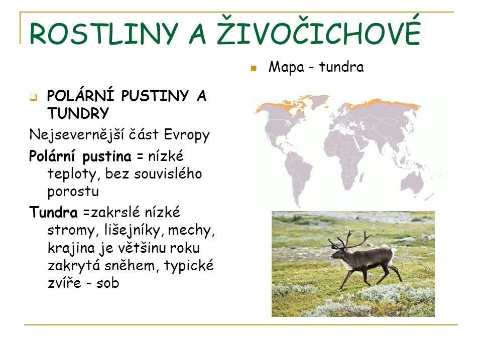 ROSTLINY A ŽIVOČICHOVÉ  POLÁRNÍ PUSTINY A TUNDRY Nejsevernější část Evropy Polární pustina = nízké teploty, bez souvislého porostu Tundra =zakrslé nízké stromy, lišejníky, mechy, krajina je většinu roku zakrytá sněhem, typické zvíře - sob Mapa - tundra