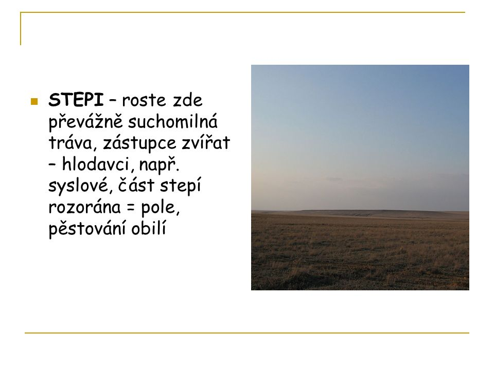 STEPI – roste zde převážně suchomilná tráva, zástupce zvířat – hlodavci, např.