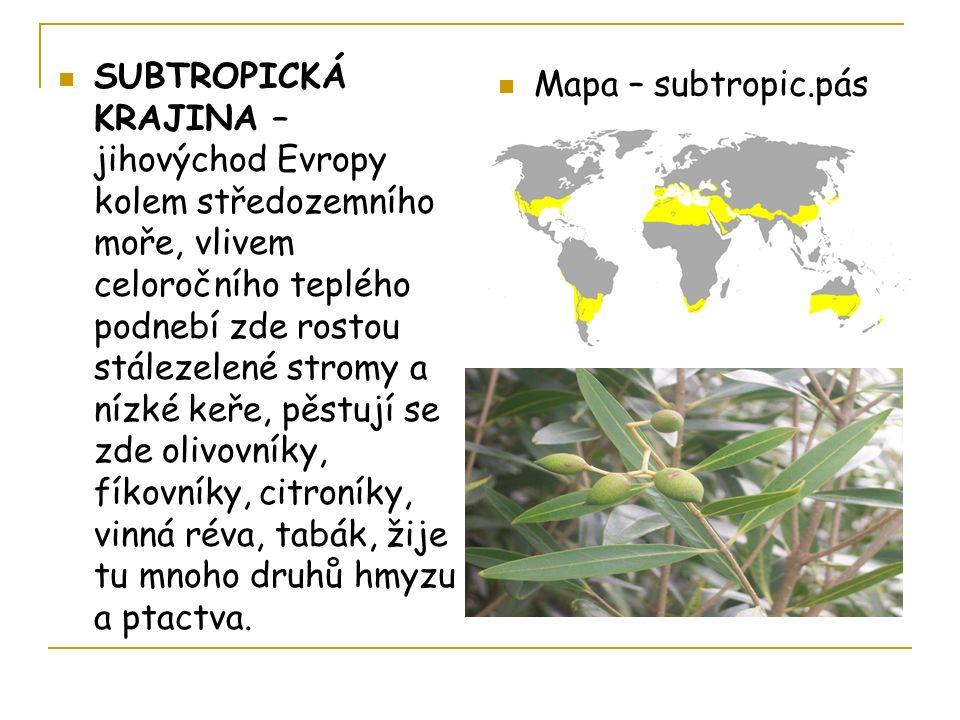 SUBTROPICKÁ KRAJINA – jihovýchod Evropy kolem středozemního moře, vlivem celoročního teplého podnebí zde rostou stálezelené stromy a nízké keře, pěstují se zde olivovníky, fíkovníky, citroníky, vinná réva, tabák, žije tu mnoho druhů hmyzu a ptactva.
