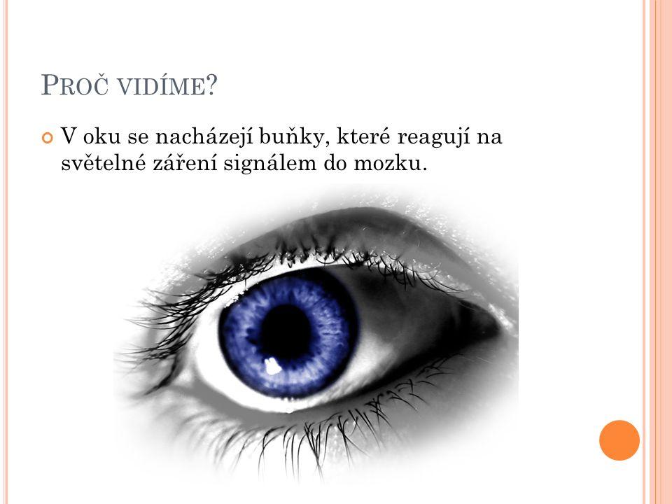 P ROČ VIDÍME V oku se nacházejí buňky, které reagují na světelné záření signálem do mozku.