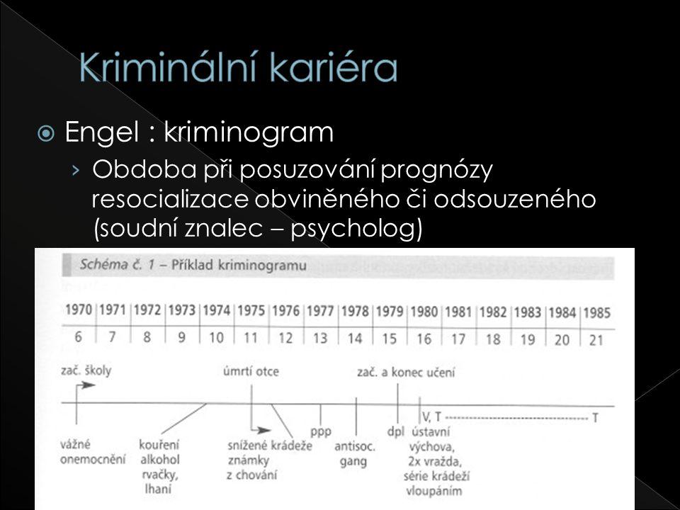  Engel : kriminogram › Obdoba při posuzování prognózy resocializace obviněného či odsouzeného (soudní znalec – psycholog)