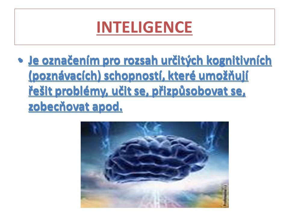 INTELIGENCE Je označením pro rozsah určitých kognitivních (poznávacích) schopností, které umožňují řešit problémy, učit se, přizpůsobovat se, zobecňovat apod.