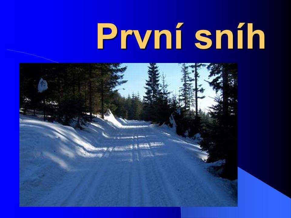První sníh První sníh