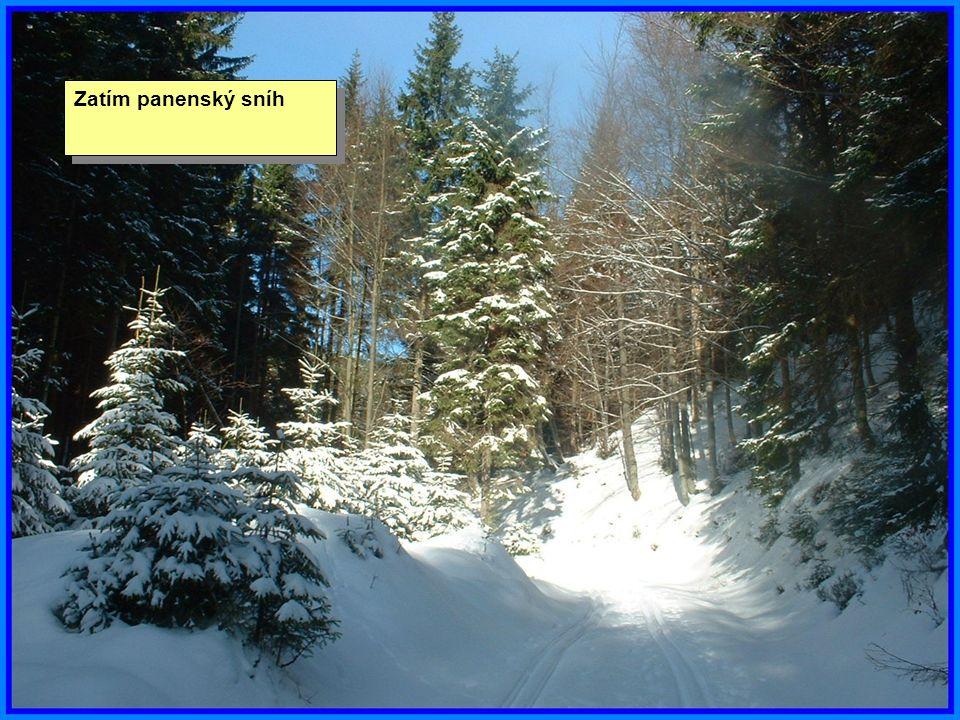Zatím panenský sníh