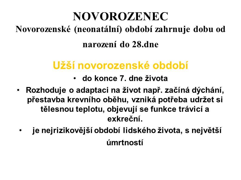 NOVOROZENEC Novorozenské (neonatální) období zahrnuje dobu od narození do 28.dne Užší novorozenské období do konce 7.
