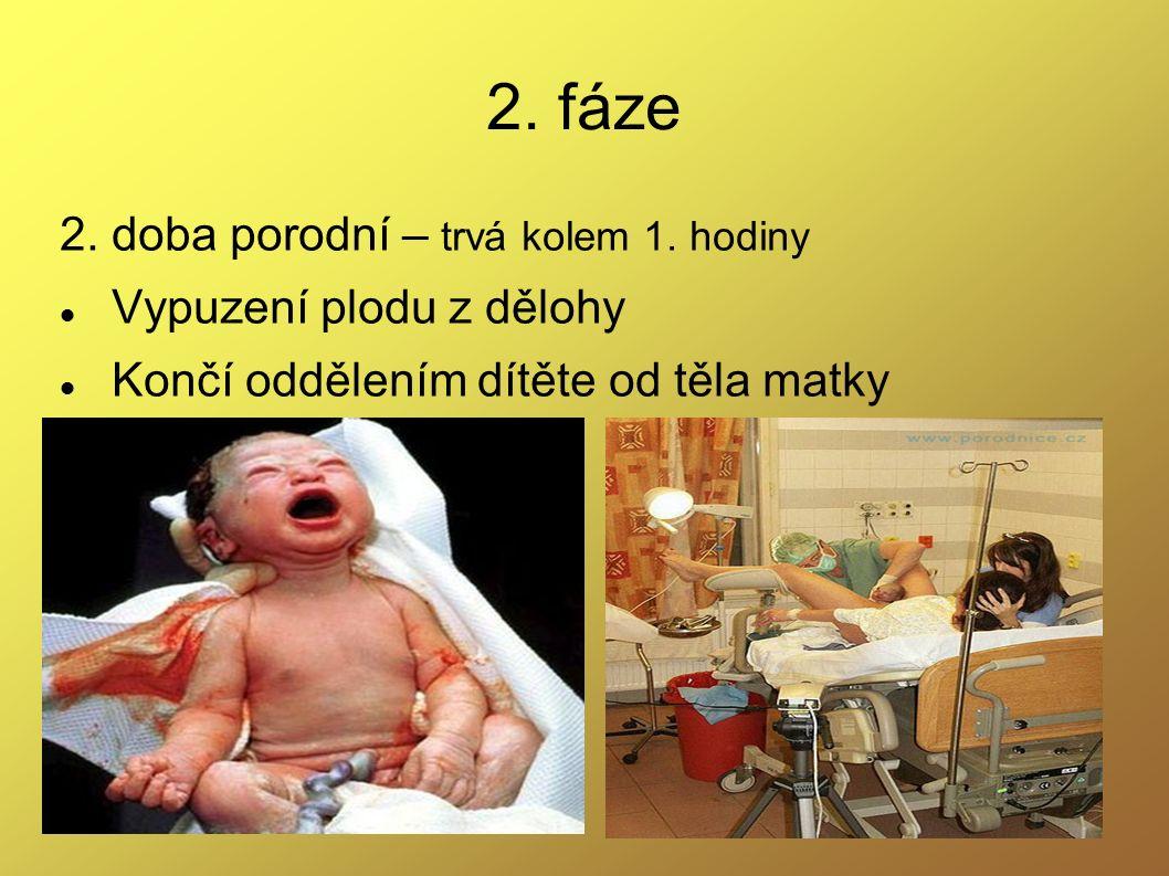 2. fáze 2. doba porodní – trvá kolem 1. hodiny Vypuzení plodu z dělohy Končí oddělením dítěte od těla matky