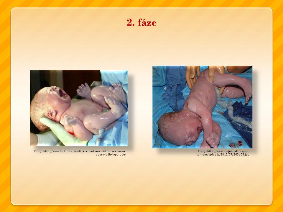 2. fáze Zdroj: http://www.mojebrisko.cz/wp- content/uploads/2012/07/263155.jpg Zdroj: http://www.bioklub.cz/rodina-a-partnerstvi/kdo-vas-muze- doprovo