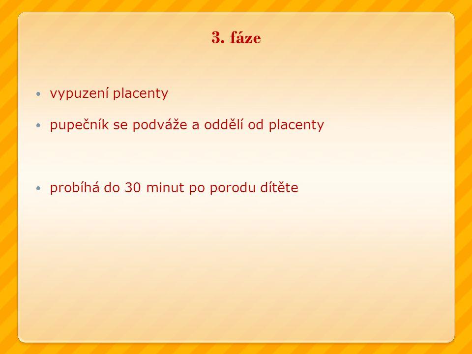 3. fáze vypuzení placenty pupečník se podváže a oddělí od placenty probíhá do 30 minut po porodu dítěte