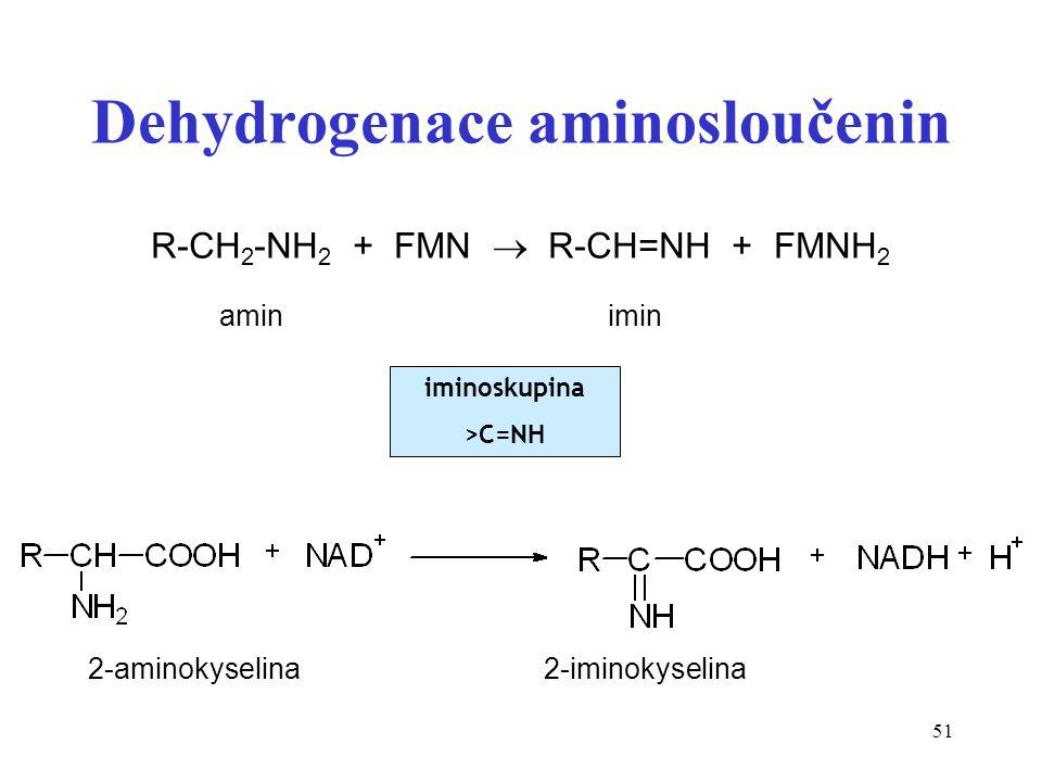 51 Dehydrogenace aminosloučenin R-CH 2 -NH 2 + FMN  R-CH=NH + FMNH 2 amin imin 2-aminokyselina 2-iminokyselina iminoskupina >C=NH