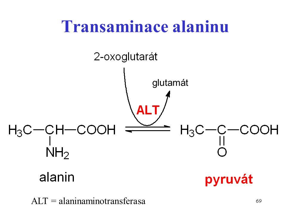 69 Transaminace alaninu ALT = alaninaminotransferasa glutamát