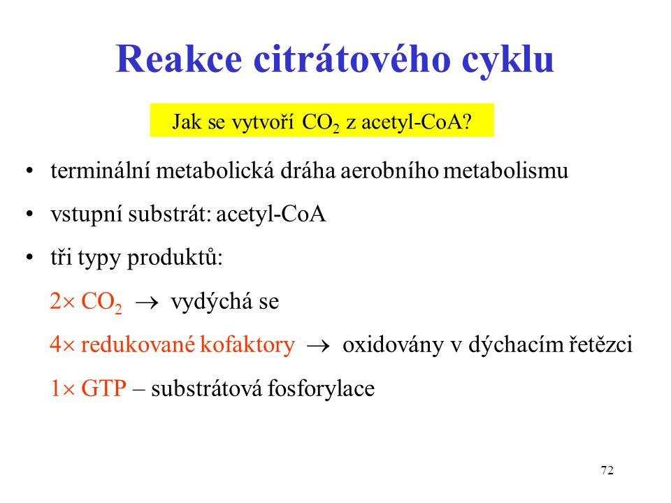 72 Reakce citrátového cyklu terminální metabolická dráha aerobního metabolismu vstupní substrát: acetyl-CoA tři typy produktů: 2  CO 2  vydýchá se 4  redukované kofaktory  oxidovány v dýchacím řetězci 1  GTP – substrátová fosforylace Jak se vytvoří CO 2 z acetyl-CoA