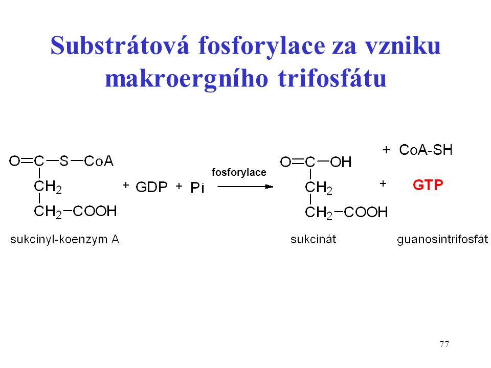 77 Substrátová fosforylace za vzniku makroergního trifosfátu + CoA-SH fosforylace