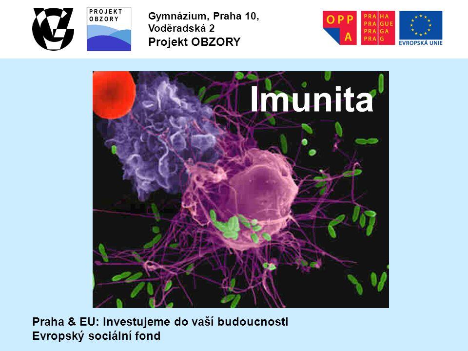 Imunita Praha & EU: Investujeme do vaší budoucnosti Evropský sociální fond Gymnázium, Praha 10, Voděradská 2 Projekt OBZORY