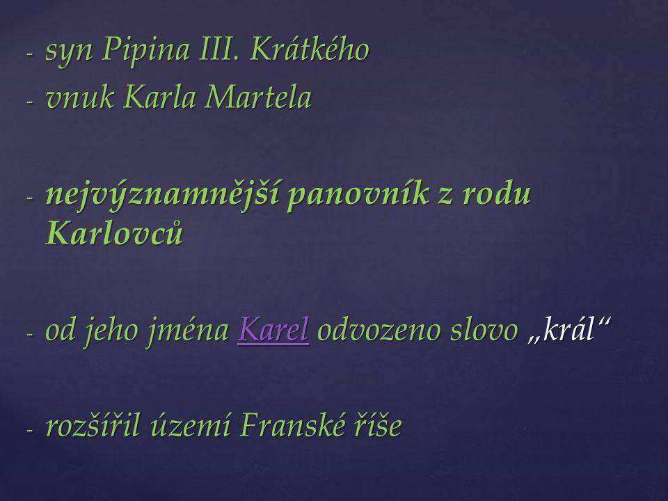 - syn Pipina III.
