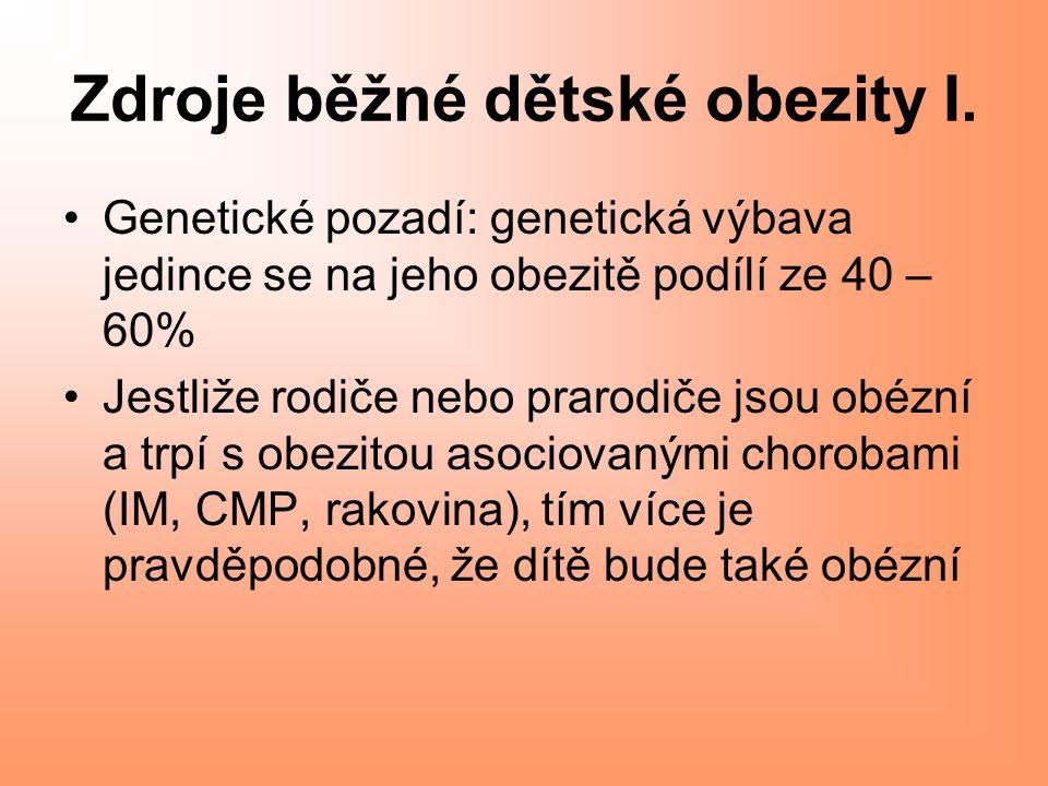 Zdroje běžné dětské obezity I.