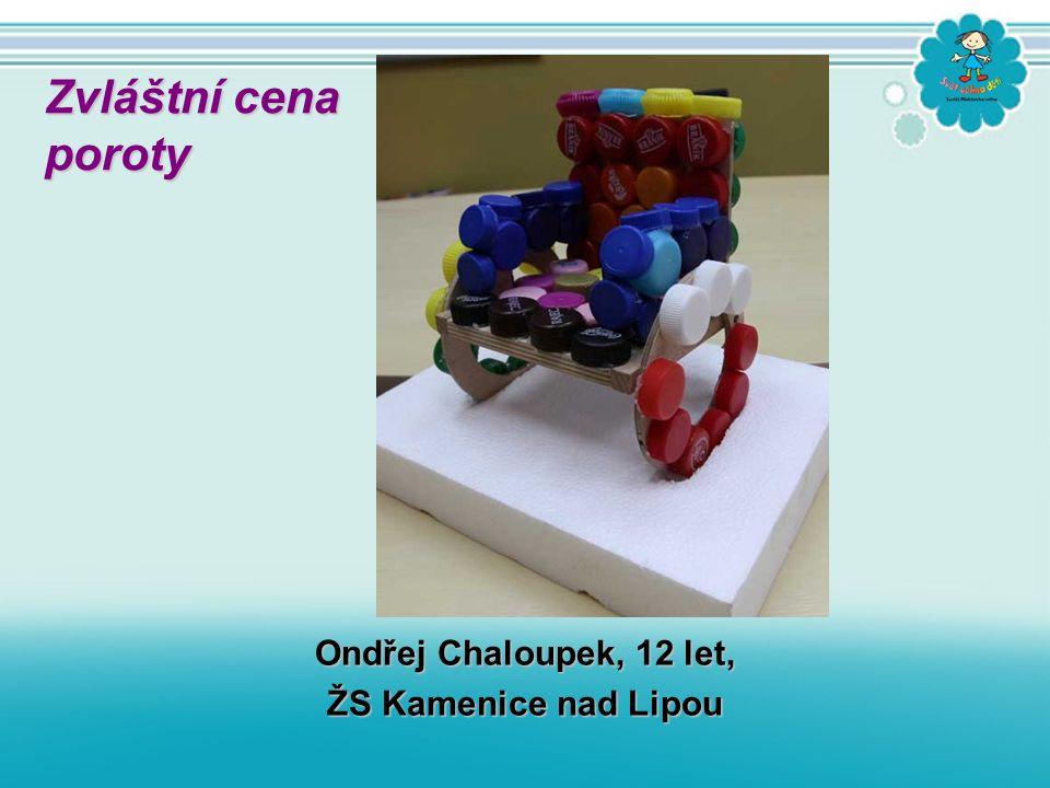 Ondřej Chaloupek, 12 let, ŽS Kamenice nad Lipou Zvláštní cena poroty poroty