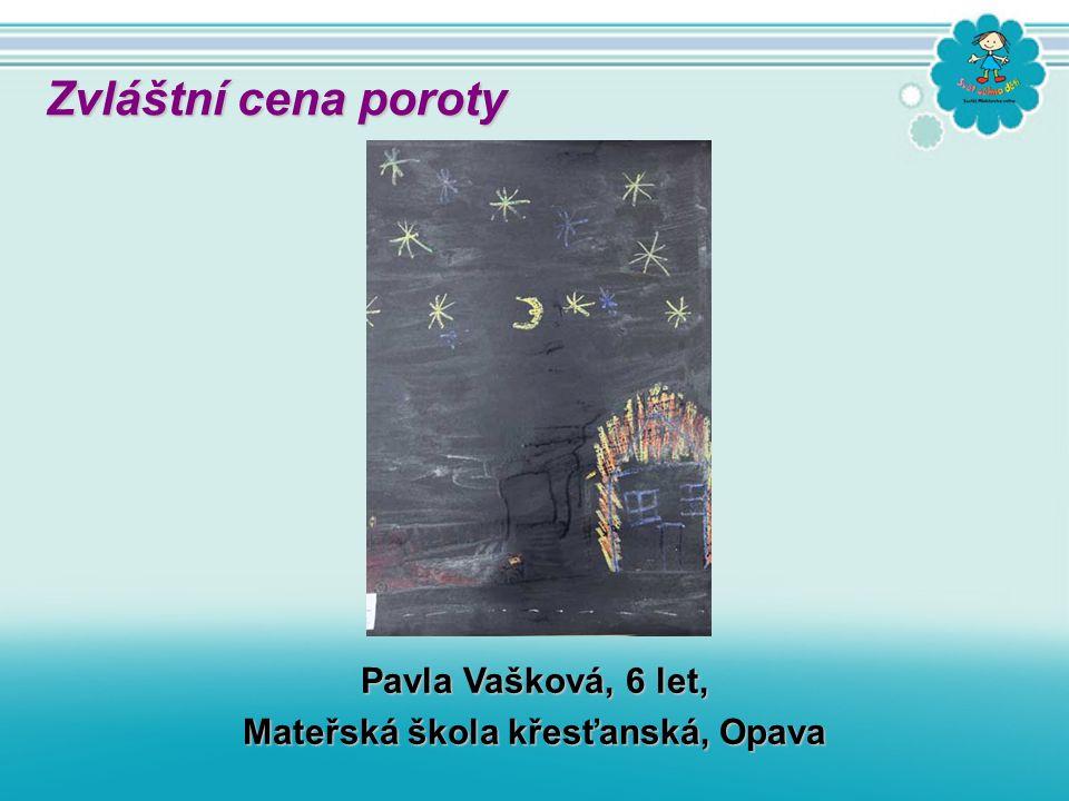 Eduard Sidoryk, 14 let, ZŠ Veronské náměstí, Praha 10 Zvláštní cena poroty poroty