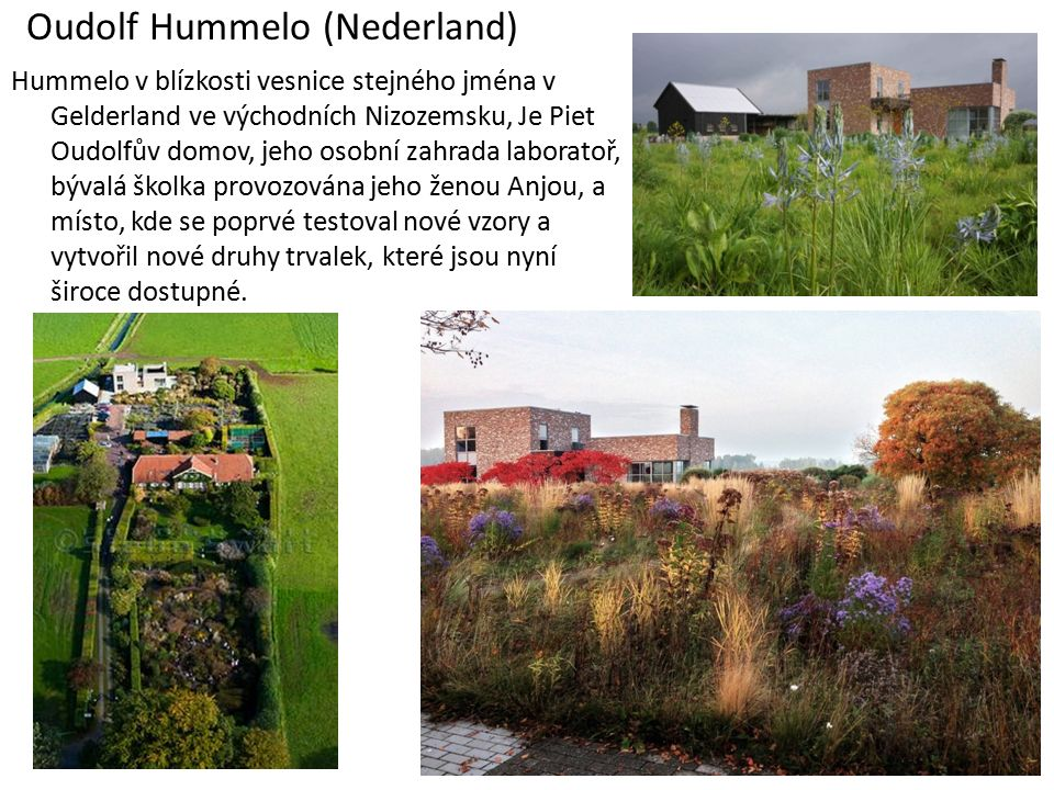 Oudolf Hummelo (Nederland) Hummelo v blízkosti vesnice stejného jména v Gelderland ve východních Nizozemsku, Je Piet Oudolfův domov, jeho osobní zahrada laboratoř, bývalá školka provozována jeho ženou Anjou, a místo, kde se poprvé testoval nové vzory a vytvořil nové druhy trvalek, které jsou nyní široce dostupné.