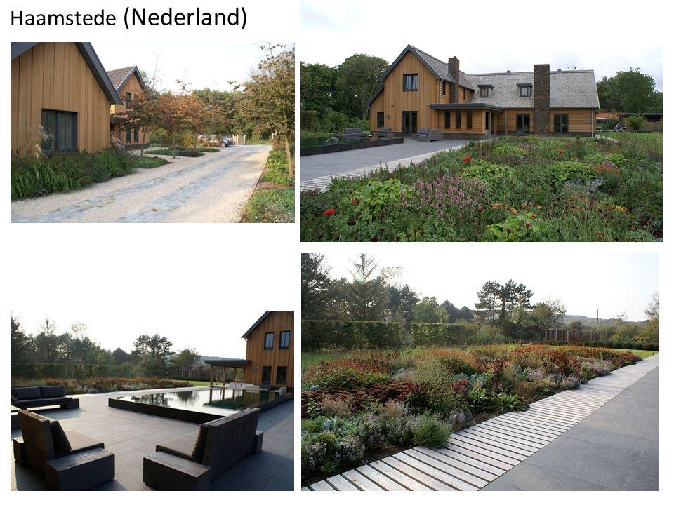 Haamstede (Nederland)