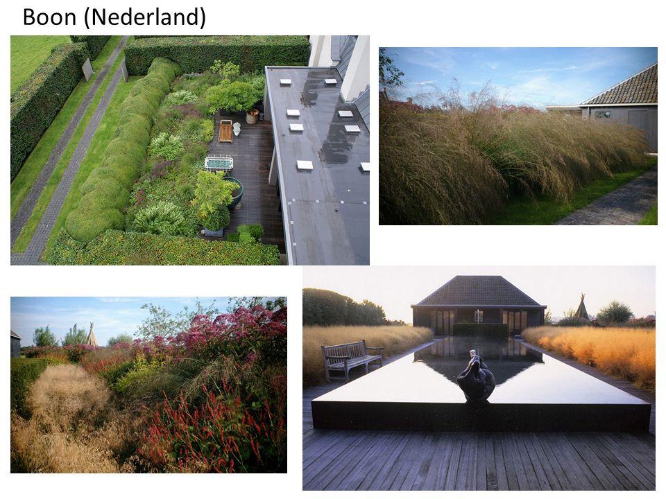 Boon (Nederland)