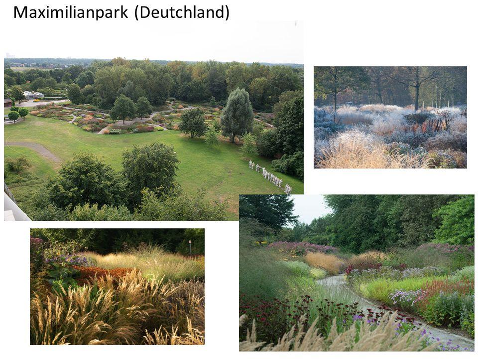 Maximilianpark (Deutchland)