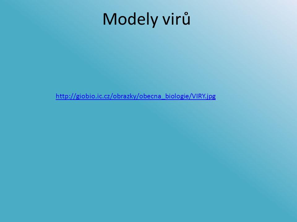 Modely virů http://giobio.ic.cz/obrazky/obecna_biologie/VIRY.jpg