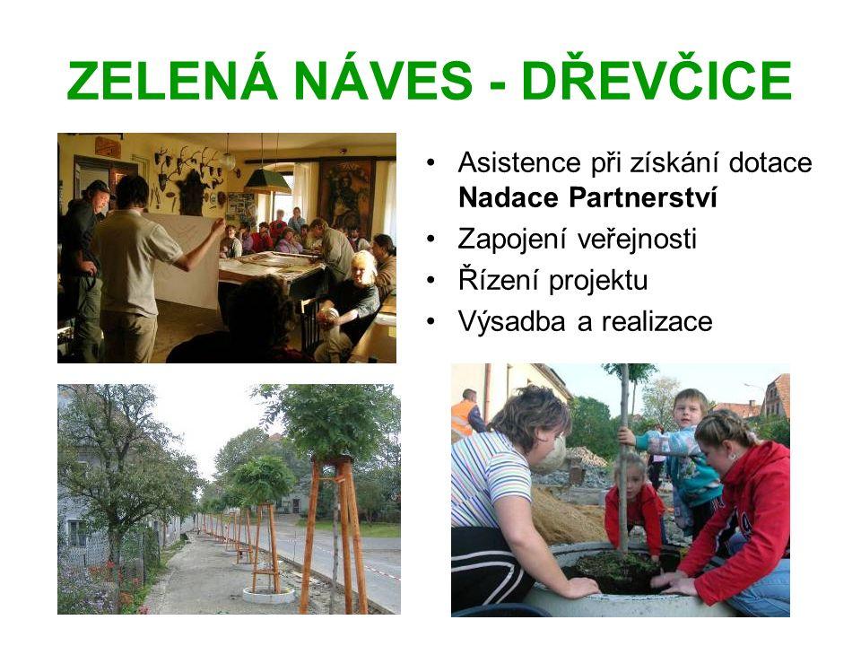 ZELENÁ NÁVES - DŘEVČICE Asistence při získání dotace Nadace Partnerství Zapojení veřejnosti Řízení projektu Výsadba a realizace