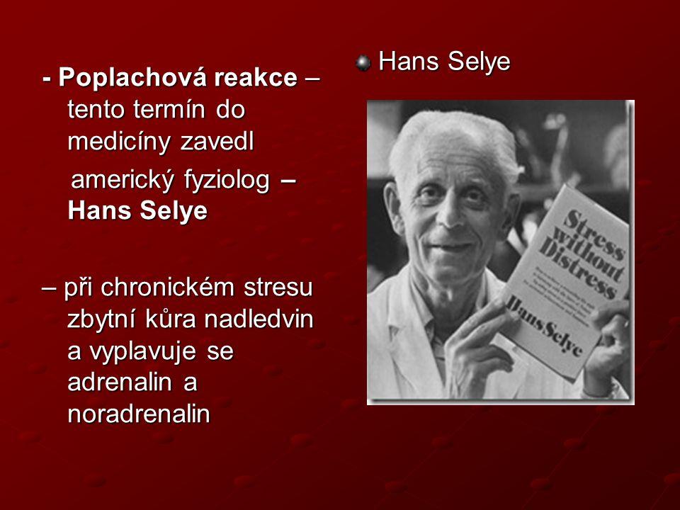 Matějček, Zdeněk.Sociální psychologie pro 4. ročník středních pedagogických škol.