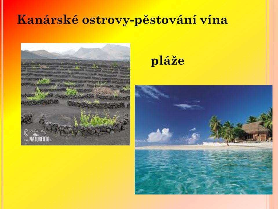 Kanárské ostrovy-pěstování vína pláže