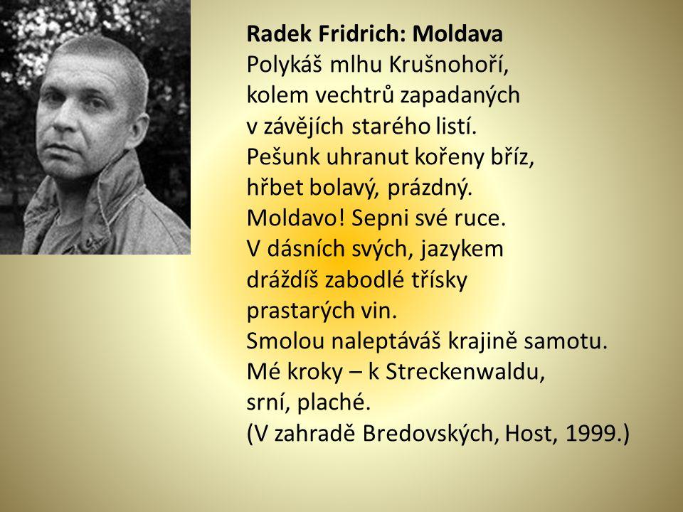 Radek Fridrich: Moldava Polykáš mlhu Krušnohoří, kolem vechtrů zapadaných v závějích starého listí.