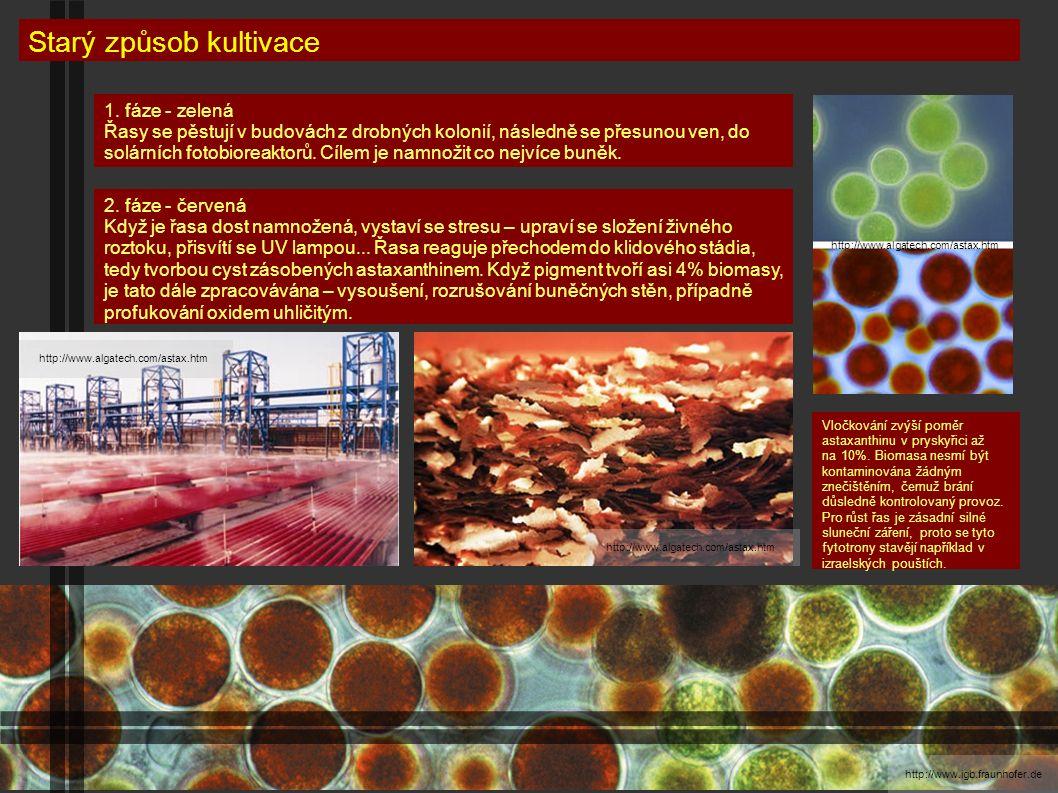 http://scienceblogs.com/ Starý způsob kultivace http://www.algatech.com/astax.htm http://www.mcdtechnologiesinc.comhttp://www.parrynutraceuticals.com/ http://content7.eol.org