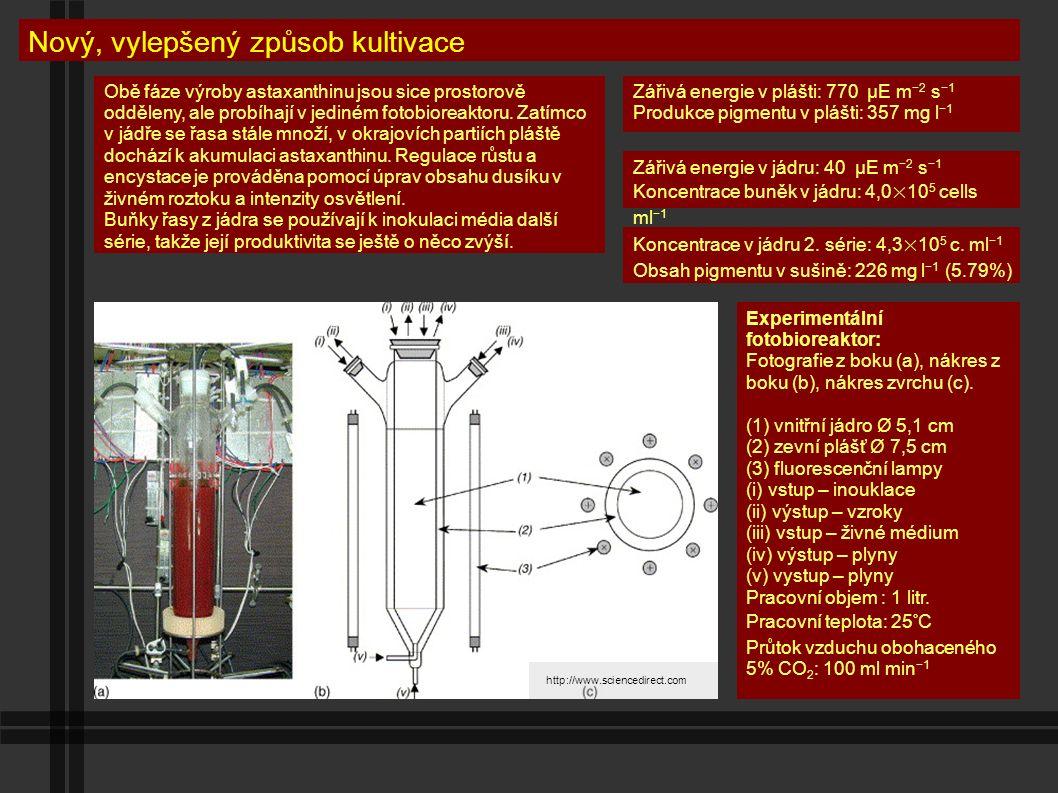 Výhody dvouvrstvého fotobioreaktoru Úspora energie – Jeden zdroj světla ozařuje obě procesní vrstvy.