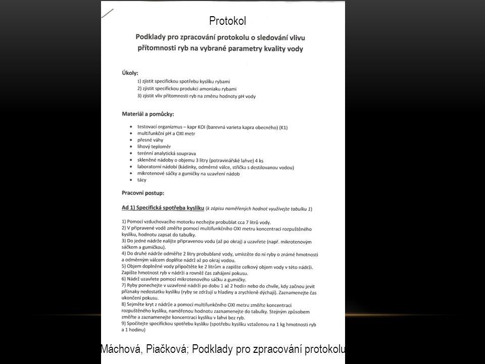 Protokol Máchová, Piačková; Podklady pro zpracování protokolu